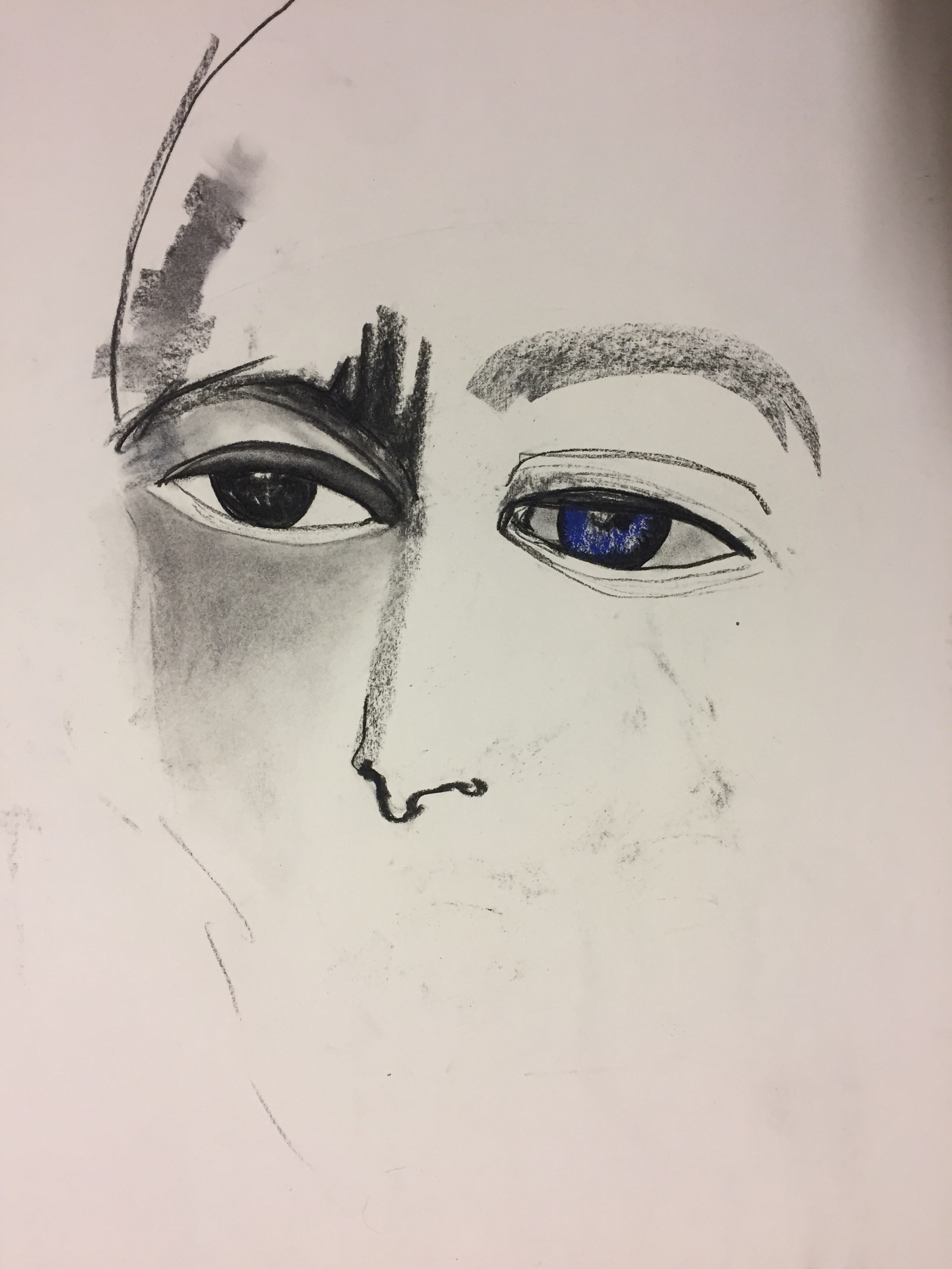 Charcoal, colored pastels on paper (60 x 50cm)